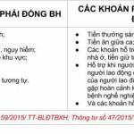 Thông tư 59/2015/TT-BLĐTBXH: Mức lương và phụ cấp đóng BHXH 2016